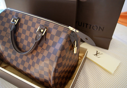 authentic louis vuitton speedy 30 damier in bangkok thailand. Black Bedroom Furniture Sets. Home Design Ideas